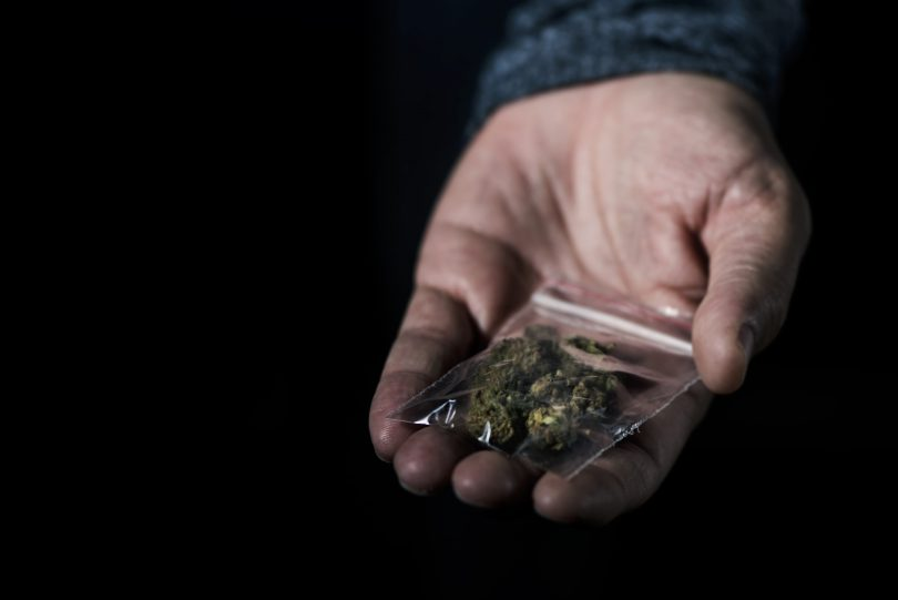 Cannabis i påse
